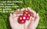 Frase Pasqua: La rinascita nel cuore