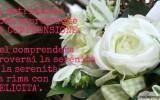 frasi-matrimonio-espresione-di-comprensione