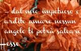 frasi-famose-dai-libri-hesse-amorefrasi-famose-dai-libri-hesse-amore