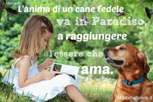 Frasi-belle-sui-cagnolini-j-moinaut