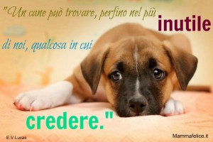 frasi-sui-cagnolini-anche-nel-più-inutile