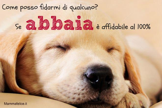 frasi-sui-cani-affidabilita